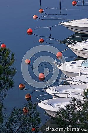 Free Marina Stock Photo - 4409840