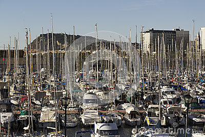 Sailboats moored in the harbor Editorial Image