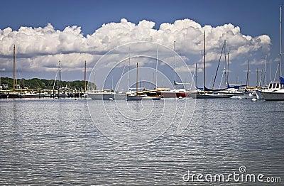 Marina Cape Cod