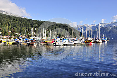 Marina in Deep Cove