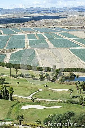 Marina Del Torre Golf Club