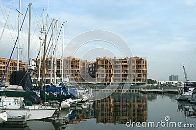 Marina Expansion