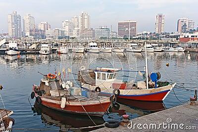Marina Punta del Este Uruguay