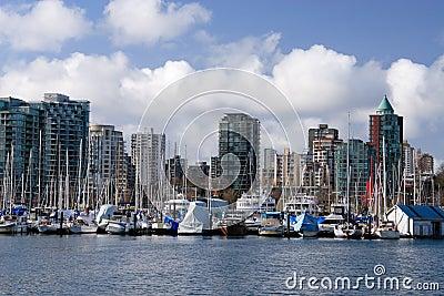 Marina in Stanley Park.