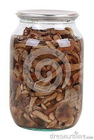 Free Marinaded Mushrooms Royalty Free Stock Photography - 18262987