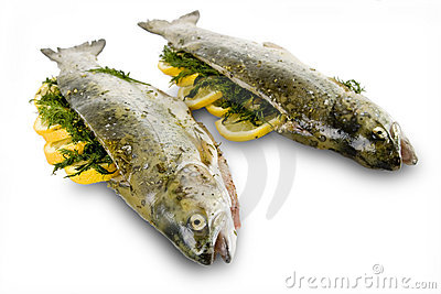 Marinated Rainbow trout