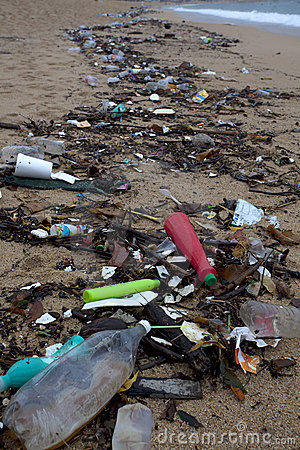 Free Marine Debris Stock Image - 15465701