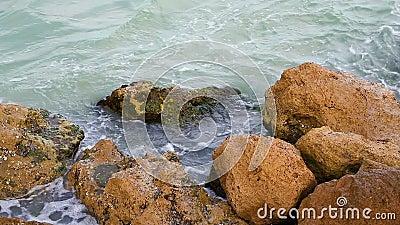 Marine Rocks Splash Loop clips vidéos