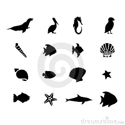 Marine sea life animals vector