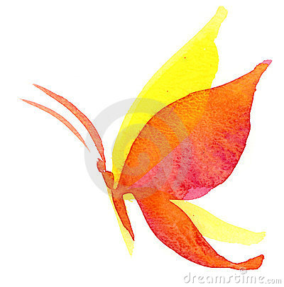 Mariposa del Watercolour
