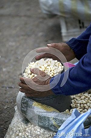 Market- Ecuador