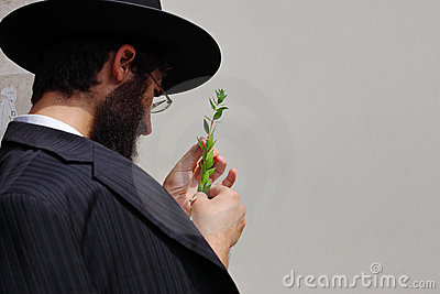 The market on the eve of Sukkot Editorial Stock Photo