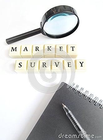 Free Market Survey Concept Royalty Free Stock Photo - 13373445