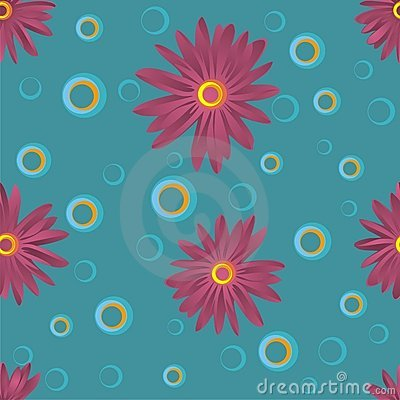 Maroon chrysanthemums