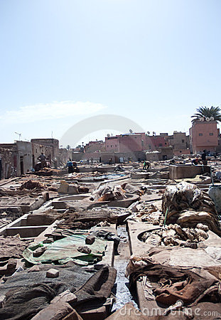 Marrakech tanneries Editorial Photography