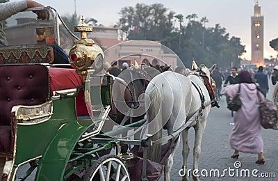 Marrakeh horse carriage