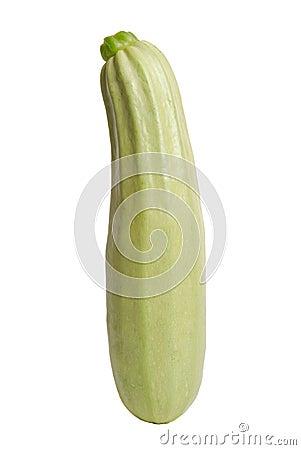 Marrow squash