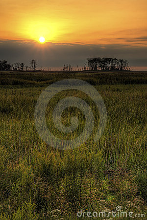 Marsh Land Sunrise