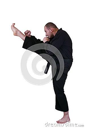 Martial art side kick