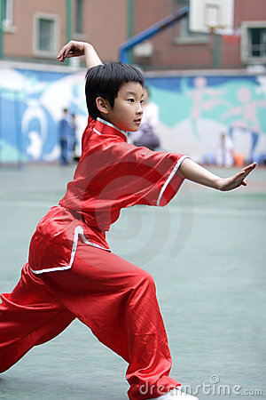 Free Martial Arts Royalty Free Stock Photos - 5296258