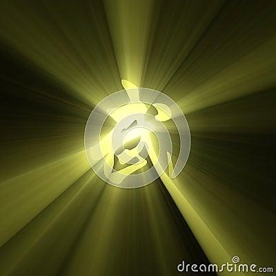 Martial arts character symbol light flare