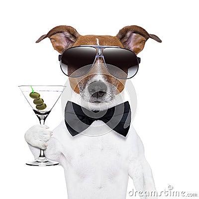 Martini dog