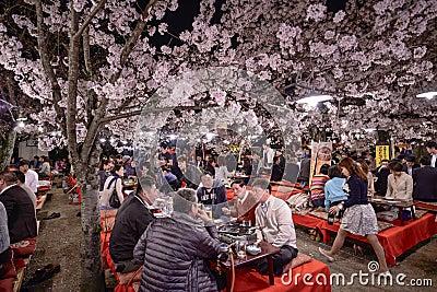 Maruyama Park Editorial Photo - Image: 39933431