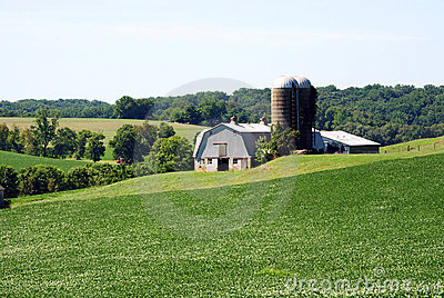 Maryland Farm