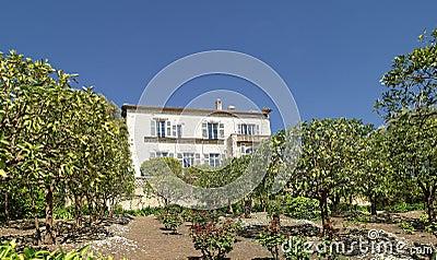 Mas of Provence