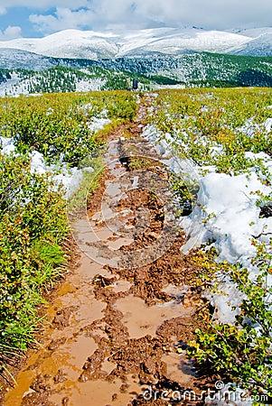 Mash trail