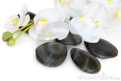 Massage Stones with Orchid