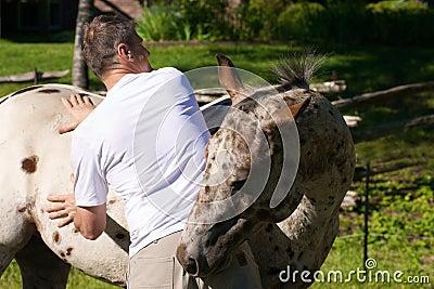 Massaging the horse