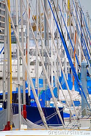 Free Masts Of Sailboats Royalty Free Stock Photos - 19000768