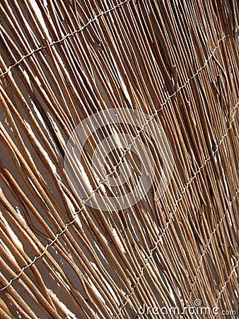 Mat of reeds
