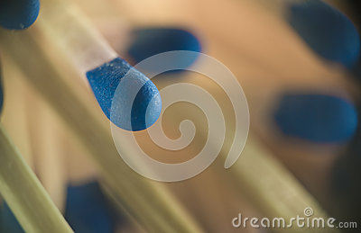Macro of blue matchsticks