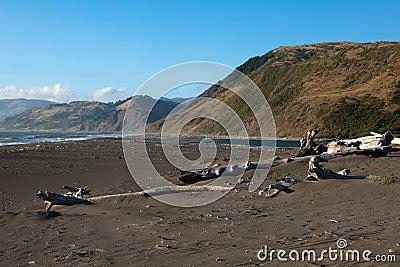Mattole plaża w królewiątka pasma konserwaci Krajowym terenie, Californ