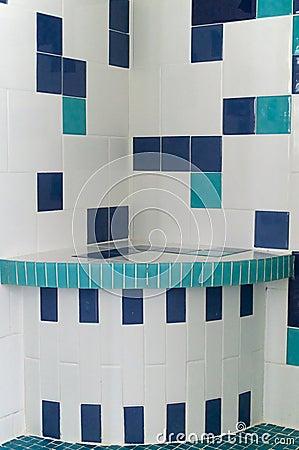 Mattonelle della doccia di bianco e del blu