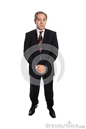 Mature business man portrait