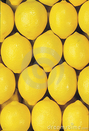 Mature group of lemons
