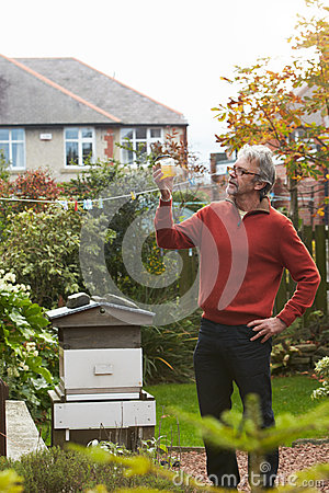 Free Mature Man Looking At Honey Produced By His Own Bees Stock Photos - 49477383