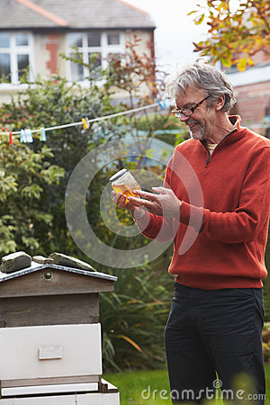 Free Mature Man Looking At Honey Produced By His Own Bees Royalty Free Stock Image - 49477816