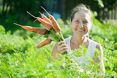 Mature woman  picking carrot