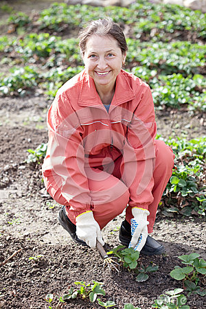 Mature woman in strawberry plant
