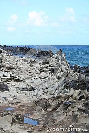 Maui Hawaii s Dragon s Teeth Rock Formations