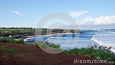 Maui s Ho okipa Beach