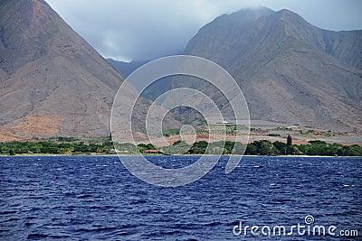 Maui Shoreline