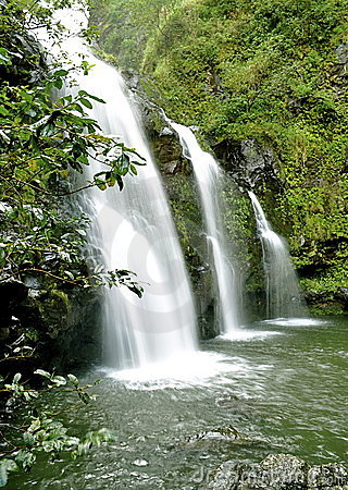 Free Maui Waterfall Royalty Free Stock Images - 9332169
