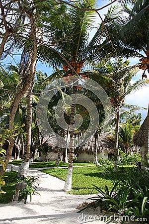 Mauritius - Africa