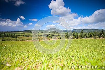 Mauritius Landscape