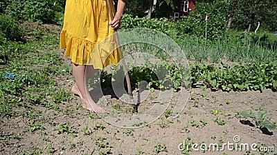 Mauvaise herbe aux pieds nus de ver de femme banque de vidéos
